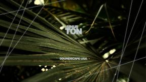 Sinuston - Soundscape USA