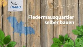 "Mission: Grün! ""DIY Fledermausquartier"" (EP06)"