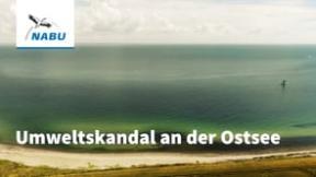 Umweltskandal an der Ostsee - Der Fehmarnbelttunnel