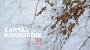 Kartal Karagedik - Opera. Nature. Photography